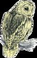 Owl Artwork 2 (Link's Awakening).png