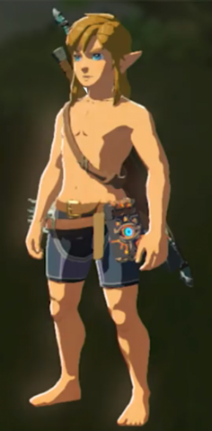File:Breath of the Wild Armor Armorless Link (No Armor Equipped).png