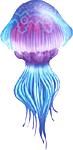 File:Biri Artwork (Ocarina of Time).png