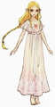 Hyrule Warriors Artwork Princess Zelda Nightgown (Concept Art)