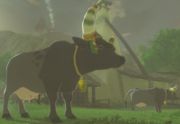 Breath of the Wild Livestock (Cow) Hateno Cow (Hateno Village)