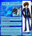 Sora minamoto profile by zephyros phoenix-d4i327z