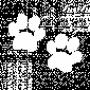 File:Zuri birthmark.png