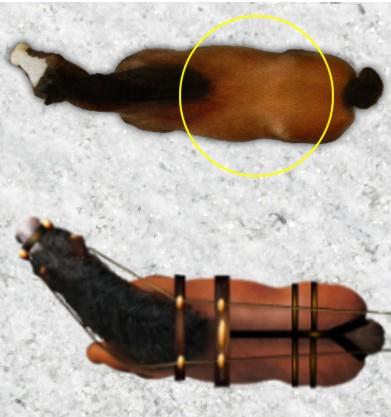 Black Plague - Token - Horse Brown