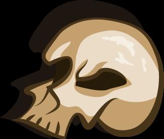 File:Skull Zero.png