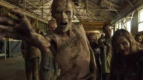 The Different Types Of Zombies The Walking Dead Zombies