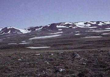 File:Tundra1.jpg