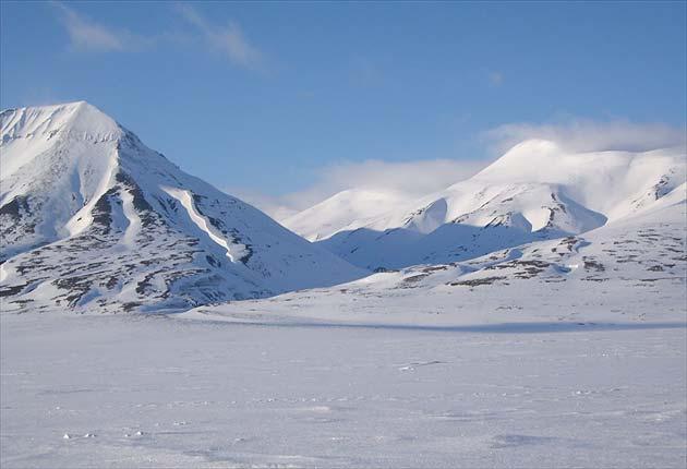 File:Arctic1.jpg