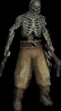 Skeletonpirate profile