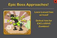 Loco Locust ad
