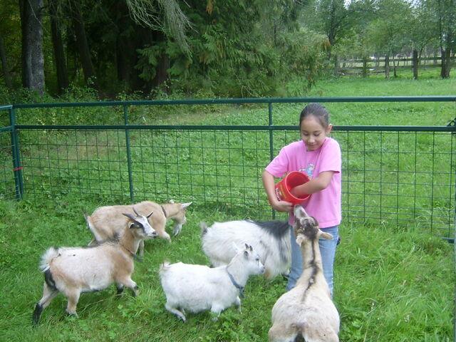 File:Emma in the Farm.jpg
