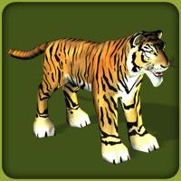Bengal Tiger Zoo Tycoon Wiki Fandom Powered By Wikia