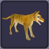 Thylacine F-1-