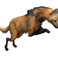 Maned Wolf from Cerrado Treasure.