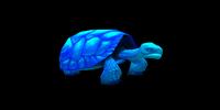 Light Blue Turtle