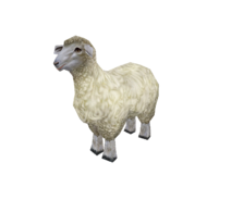 ZT2 Unused Sheep