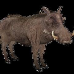 Warthog remake.