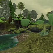 Preview temperaterainforest