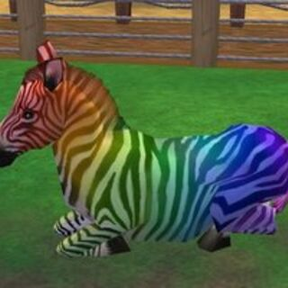 A Party Zebra, a Common Zebra variant made in honor of the Party Tiger by Stormy.