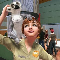 Keeper and a Ring-Tailed Lemur