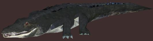 File:American Alligator 2.jpg