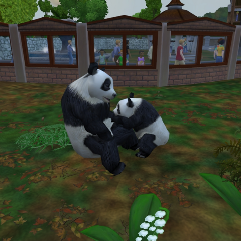 A mother and cub Giant panda as seen in Zoo Tycoon 2.