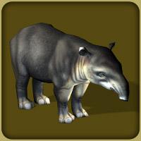 File:Tapirs.jpg