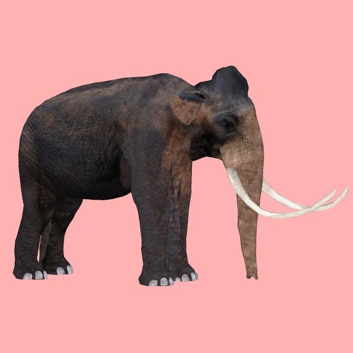 Columbian Mammoth Royboy407 Zt2 Download Library Wiki
