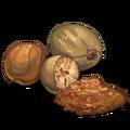 SeasonalSpices Nutmeg-icon