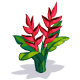 Heliconia-icon.png