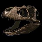 Fossils TRex-icon