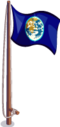 Flag earth-icon