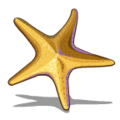 Starfish (collection) Yellow Starfish-icon
