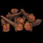SeasonalSpices Cloves-icon