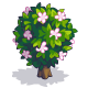 File:Jasmine-icon.png