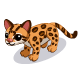 File:Margay-icon.png