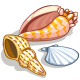 Shells-icon.png