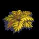 Yellow Fern-icon