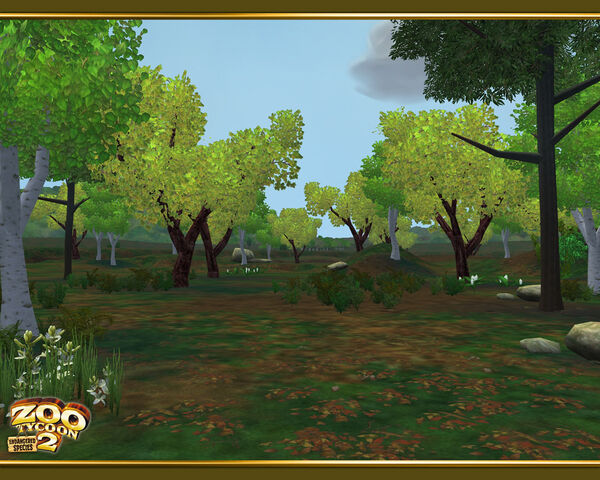 File:Temperate Forest wallpaper.jpg