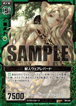 B04-091 Sample