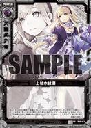 P08-017 Sample