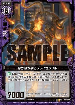 B02-074 Sample