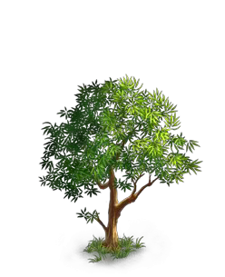 File:Tree 3.png