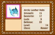 Arctic Leather Helm